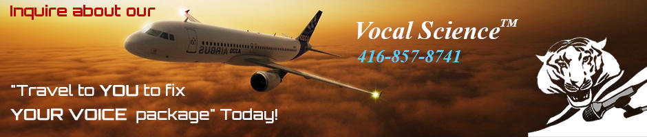 We Can Travel to You to Fix Your Voice!